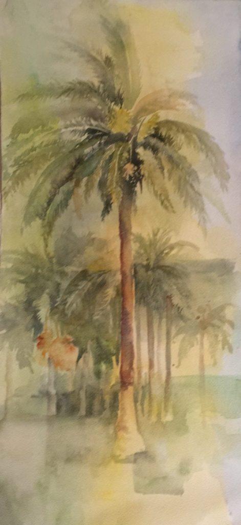 portfolio-acquerello